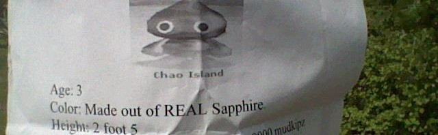 Have You Seen This Chao?