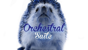 Community Spotlight: Hedgehog Orchestral Suite