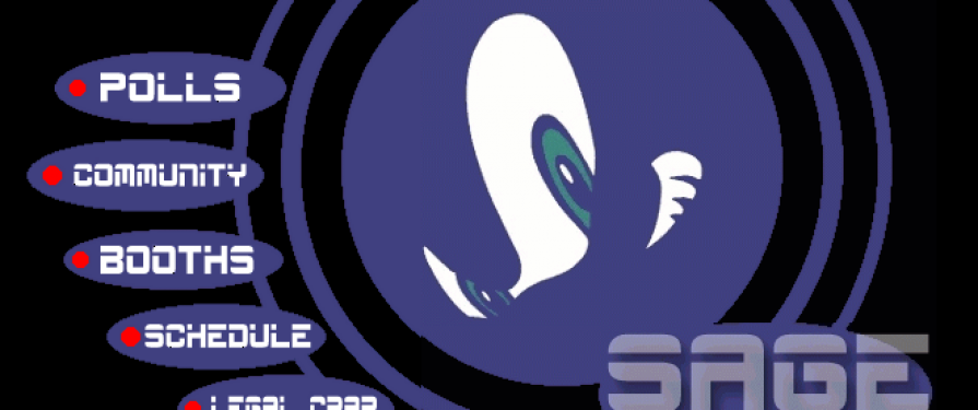 Sonic Amateur Games Expo Opens For A Second Show